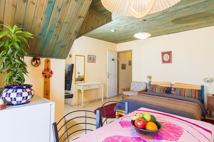 Romantic for Couple with Lake View - Safed - Pis