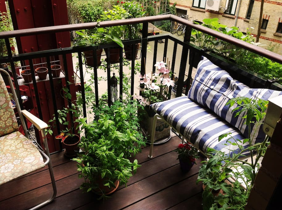 The balcony in july, when everything is in full bloom