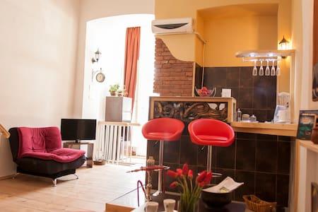 квартира в старом городе Tbilisi - トビリシ - アパート