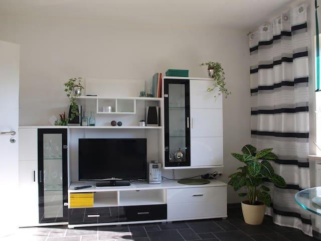 Ferienwohnung silberstreifengruen - Ottweiler - Apartamento