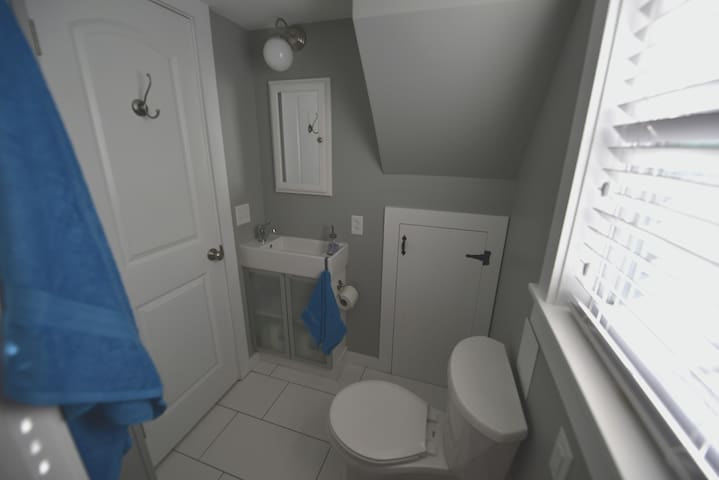 Bath, full size shower, comfort commode
