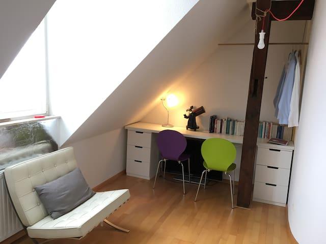 Helle, freundliche Maisonettewohnung - Breisach - อพาร์ทเมนท์