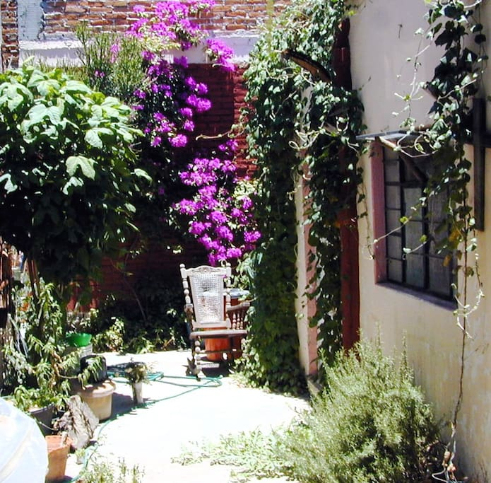 Private rooms in San Miguel Allende