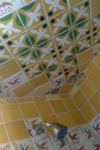 Shower ceiling ©2o16 perry hoffman