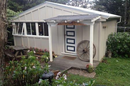 Studio nestled in NZ bush