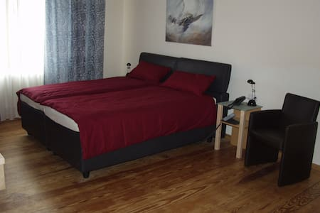 Exclusive overnight in Landau/Pfalz - Landau - Other