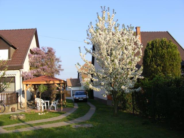 At Tisza-lake, quiet environment - Abádszalók - Hus