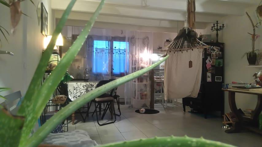 très bel appartement nature, sur la côte landaise