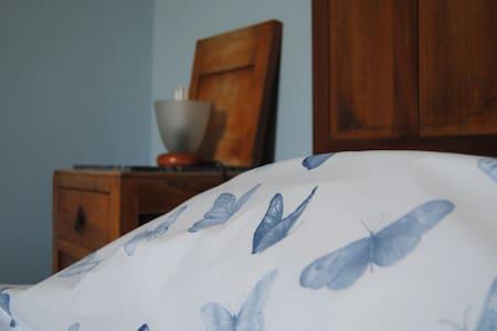 Cheap room close to Chianti