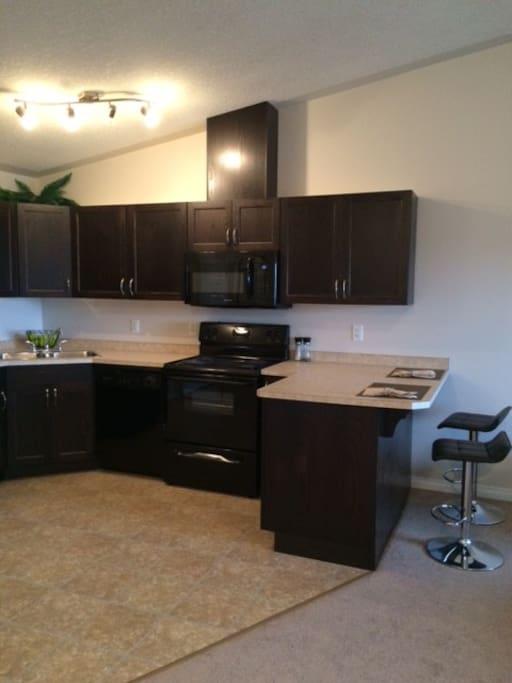 Top Floor Executive One Bedroom Apartments For Rent In Edmonton Alberta Canada