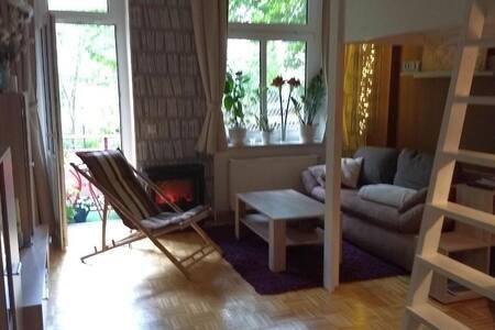 Mitten in Leipzig Wohnung 1