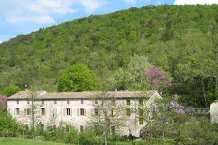 the family suite for 4/5 personnes - Saint-Thomé