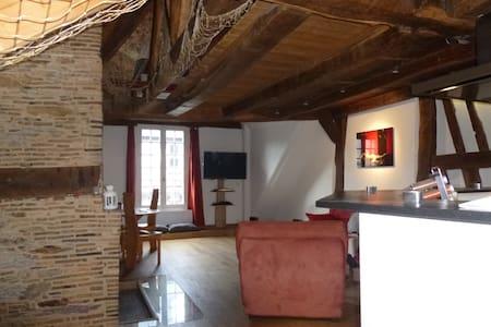 Loft centre historique de Rennes - Rennes - Loft