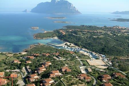Villa Costa Corallina Mare - House