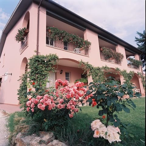 B&B DI CAMPAGNA IN MAREMMA TERME DI SATURNIA - Montemerano - Bed & Breakfast