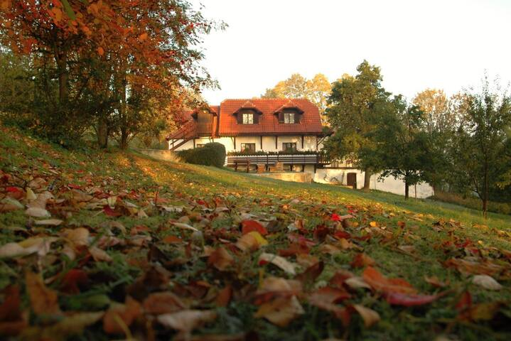 Penzion Dvůr - attic apartment - Hracholusky
