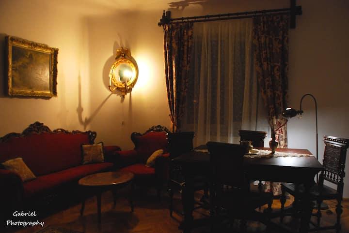 Casa Szabo: 4 person  1847 Bidermeyer apartment!