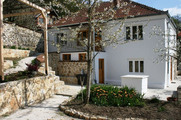 "Runjeva's ""Little Inn"", Kosovo - Kaçanik - House"