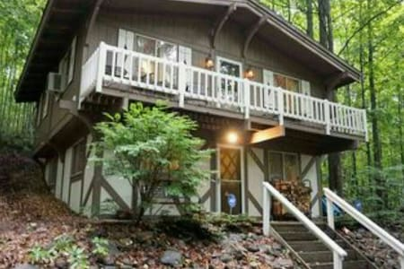 BEAUTIFUL CHALET  AT SHANTY CREEK - Bellaire - Bungalo