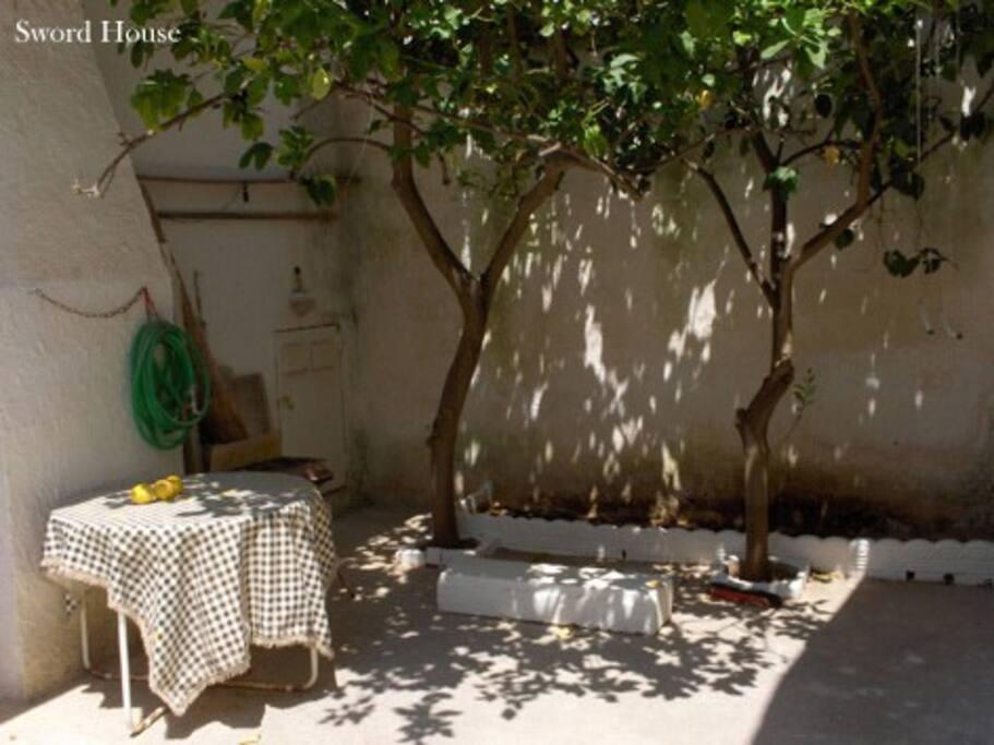 giardino posteriore con alberi di limone, ottimo per le cene e per fare colazione