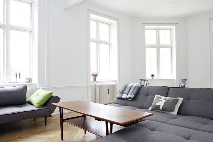 Large & light flat in central Cph