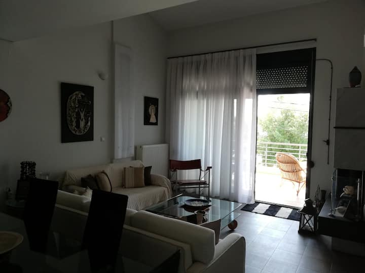 Beachfront casual luxury home in Toroni