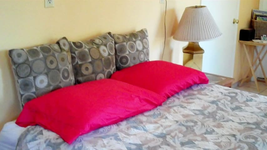 Serta Perfect Sleeper Queen size bed in front room