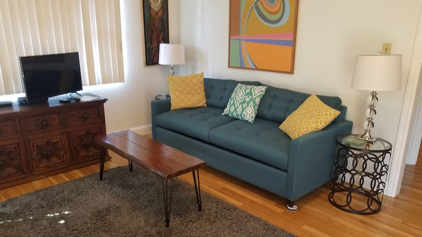 Queen-size sofa/bed in the living room