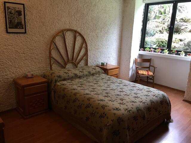 Nice bed room, garden, security. Near COLMEX!