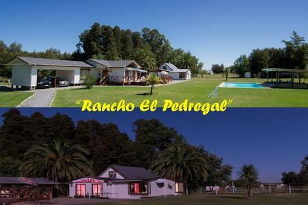 """""""Rancho El Pedregal"""" - Yerbas Buenas"""