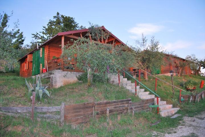 bungalow con cucina in legno in agriturismo