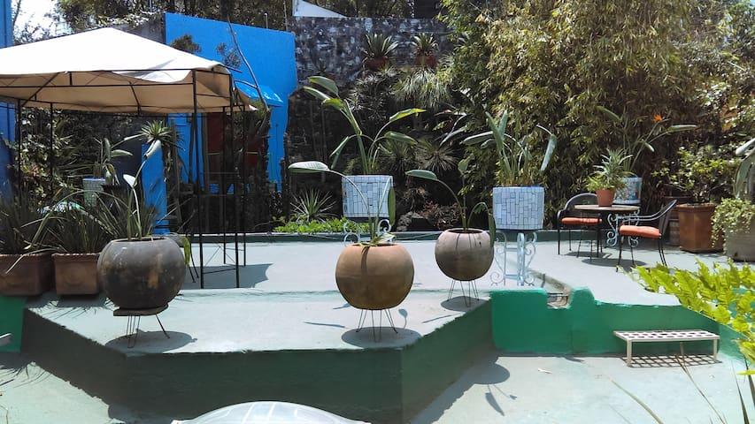 House & Garden in Coyoacan - Mexico City