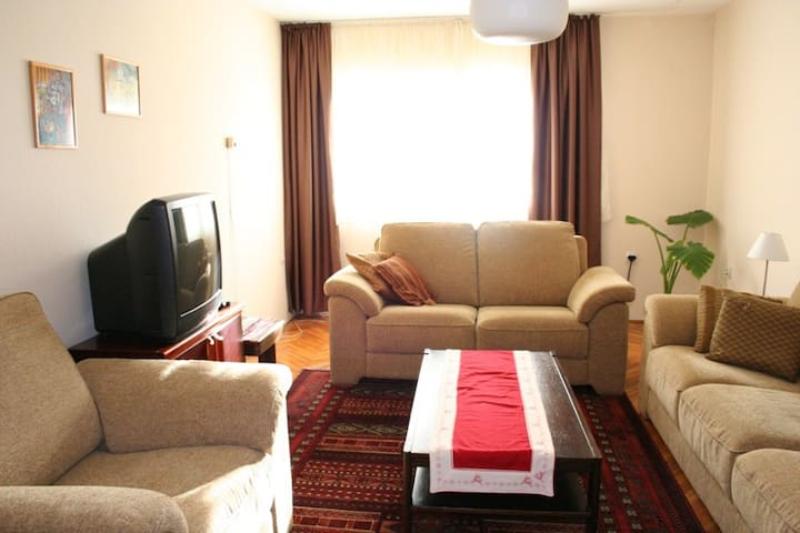 Taslixhe Apartment in Pristina