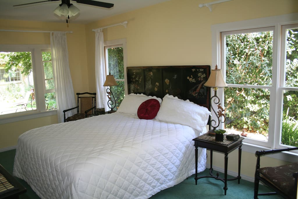 Master suite has Windows Looking Out to the Garden & Large Walk-in Closet