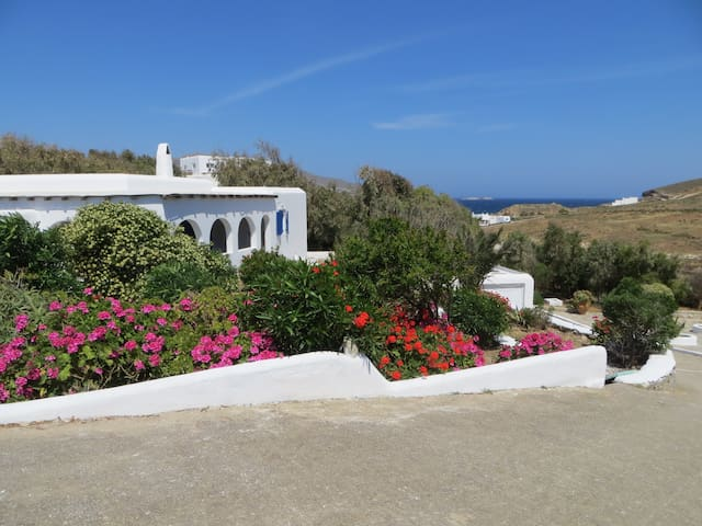 Charming house and wonderful garden