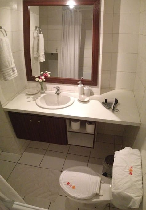 Bathroom equipped with hair dryer, toilet paper, soap, shampoo and towels