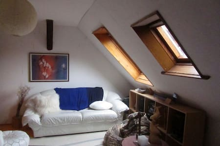 Quiet and Beautiful doublebed room - Ammerschwihr - Hus