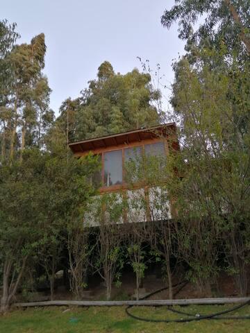Cabaña de Rosy