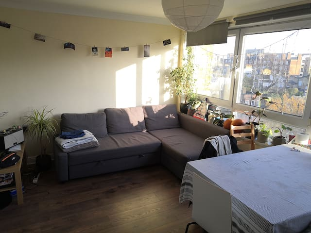 Private Single bedroom next to Mile end Park