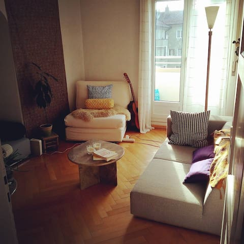 City center on a pedestrian street, warm & quiet - Fribourg - Appartement