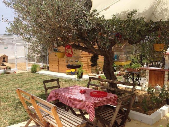 Maison coquette au coeur de la campagne - Nabeul - Guesthouse