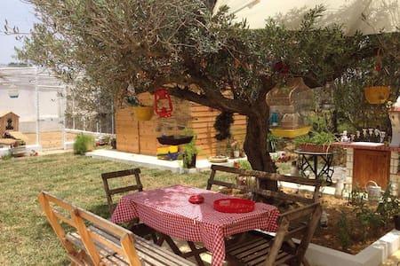 Maison coquette au coeur de la campagne - Nabeul