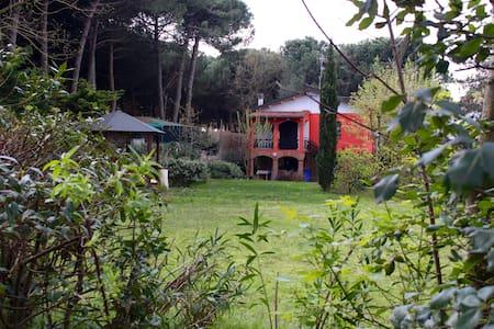 Casa Mare Zadina di Cesenatico - Cesenatico - วิลล่า