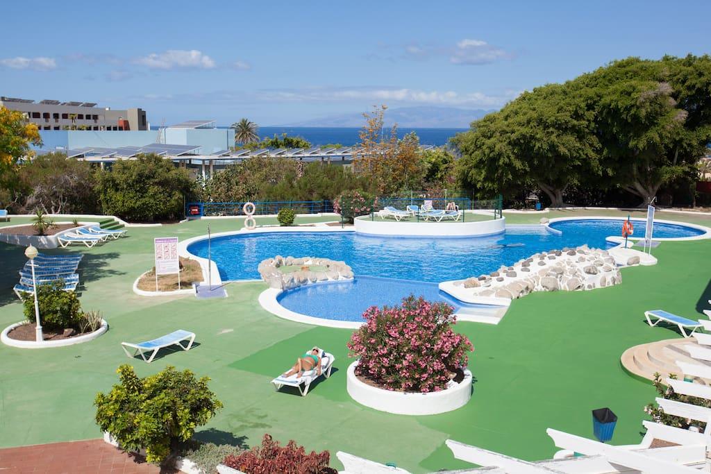 The free pool for guests/ Бесплатный бассейн для гостей