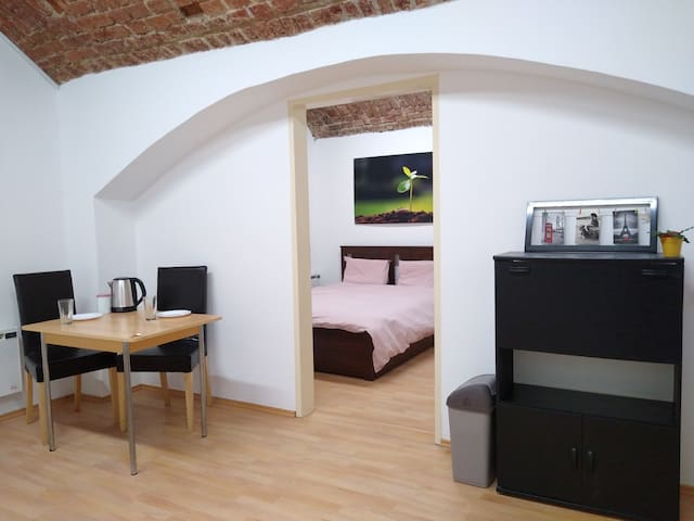 Private Apartment with Brick Ceiling