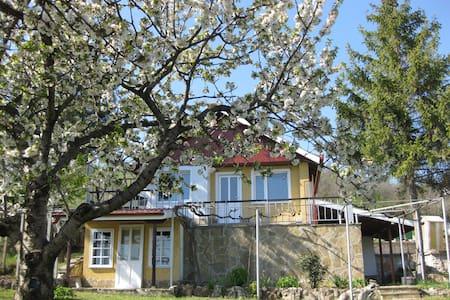 Sunshine Villa by the Sea - Varna