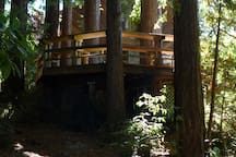 Back of house from the redwoods