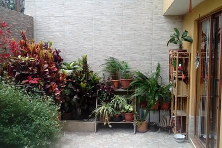 Chambre simple ou double - Quito - Haus