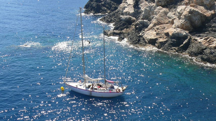 location de voilier à quai ou en mer pour 6 person - Collioure - Boot