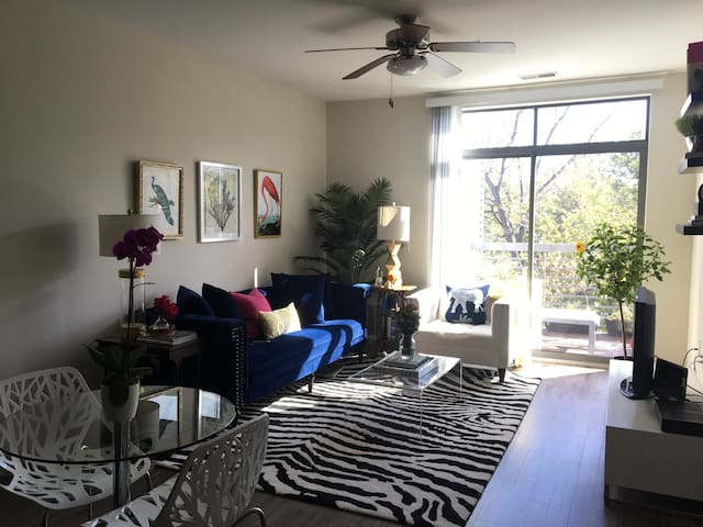 Chic 1BR in Downtown Bethesda - Bethesda - Apartment